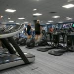 Image of men and women running on treadmills s